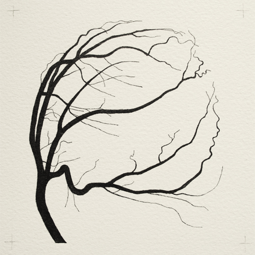 oona-culley-coronary-arterial-tree.02