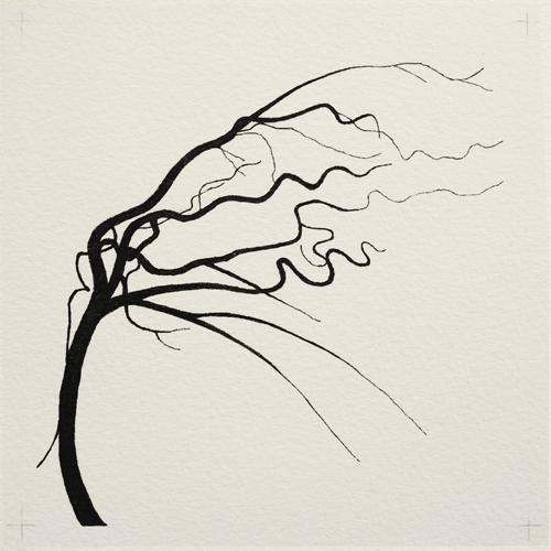 oona-culley-coronary-arterial-tree.03