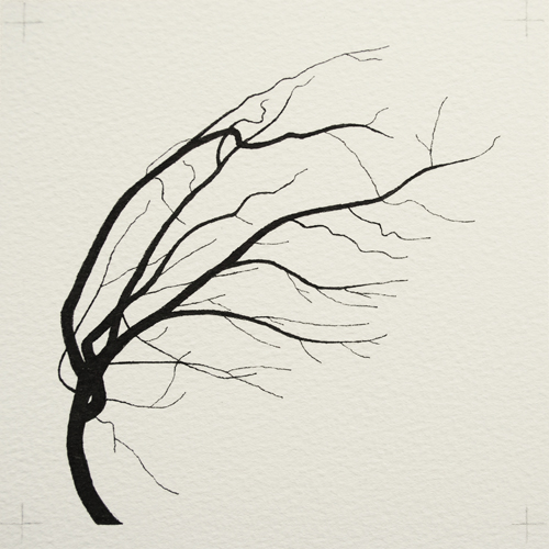 oona-culley-coronary-arterial-tree.06