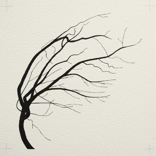 oona-culley-coronary-arterial-tree.06