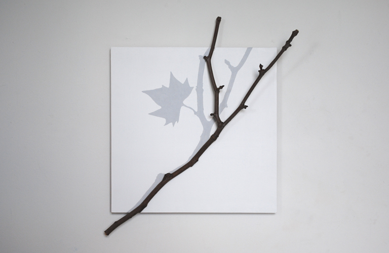 Read more about the article Last Leaf / Shadow Memory 2005-08