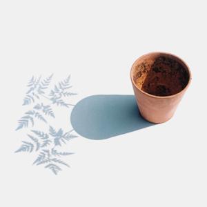 oona-culley-shadow-01