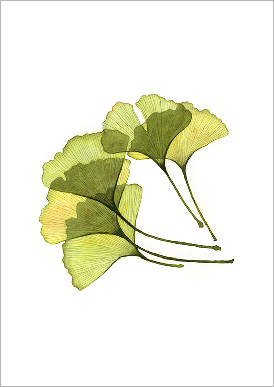 Botanical Painting 2019